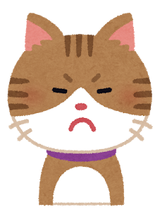 Chị mèo